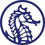 Starseeker Seahorse Logo Illustrator vector | Diane Gronas