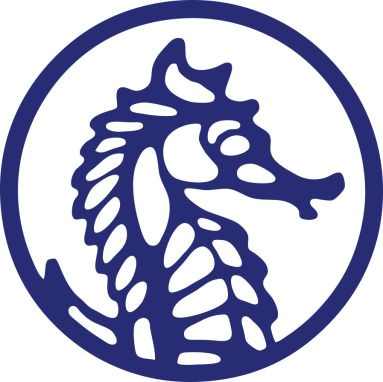 seahorse-vector-logob-copy