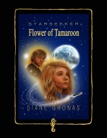 Starseeker Poster Photoshop | Diane Gronas