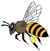 Honeybee | Diane Gronas | refined in PAINTER